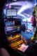 Musketeer Gripweed 2012-10-26-100-8580 thumbnail