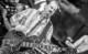 Beach Boys-18 thumbnail