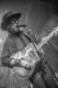 Musketeer Gripweed 2012-10-26-58-8299 thumbnail