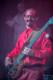 Musketeer Gripweed 2012-10-26-69-8437 thumbnail
