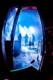 Musketeer Gripweed 2012-10-26-87-8534 thumbnail