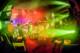 Musketeer Gripweed 2012-10-26-88-8530 thumbnail