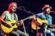 Weir-Greene 2012-12-13-33-0752 thumbnail