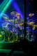 Disco Biscuits 2013-01-24-28-9433 thumbnail