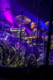 Disco Biscuits 2013-01-24-47-9437 thumbnail