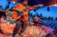 B.B. King 2014-08-11-20-6619 thumbnail