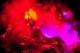 Flaming Lips 2013-12-29-06-9115 thumbnail