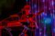 Flaming Lips 2013-12-29-36-7941 thumbnail