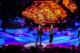 Lionel Richie 2014-06-11-10-6632 thumbnail