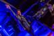 Rob Garza 2015-04-04-42-7573 thumbnail