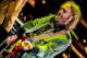 Tom Petty 2014-09-30-15-0395 thumbnail
