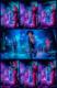 Musketeer Gripweed 2012-10-26-103- thumbnail