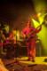Musketeer Gripweed 2012-10-26-66-8405 thumbnail