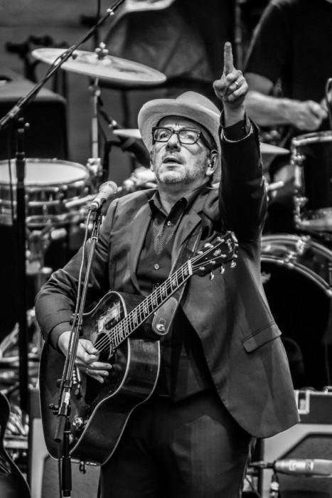 Elvis Costello 2015-07-06-15-8490