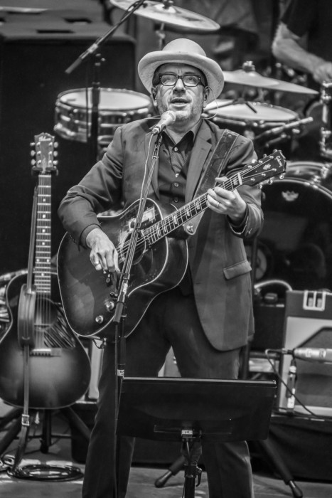 Elvis Costello 2015-07-06-21-8421