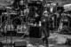 Elvis Costello 2015-07-06-24-8529 thumbnail
